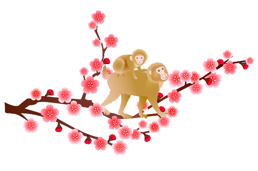 monkey-japanese-cherry-blossom