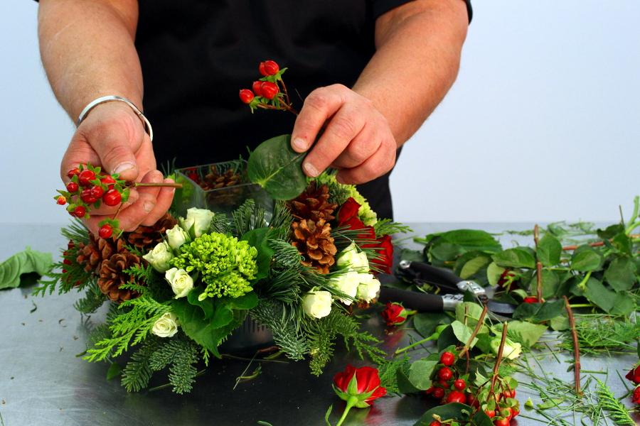 Take leaves off hypericum berries