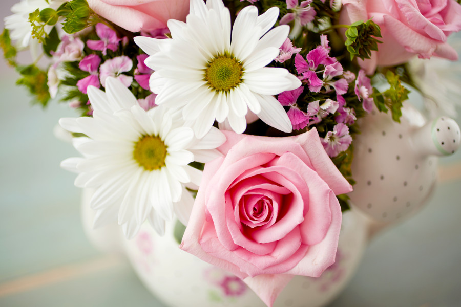 White Daisies & Pink Roses Close-up