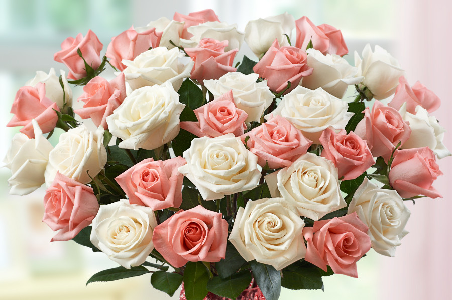 Mother's Day White & Pink Roses