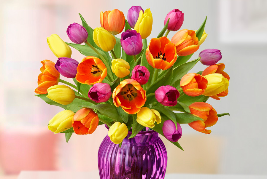 Mother's Day Multicolored Tulips
