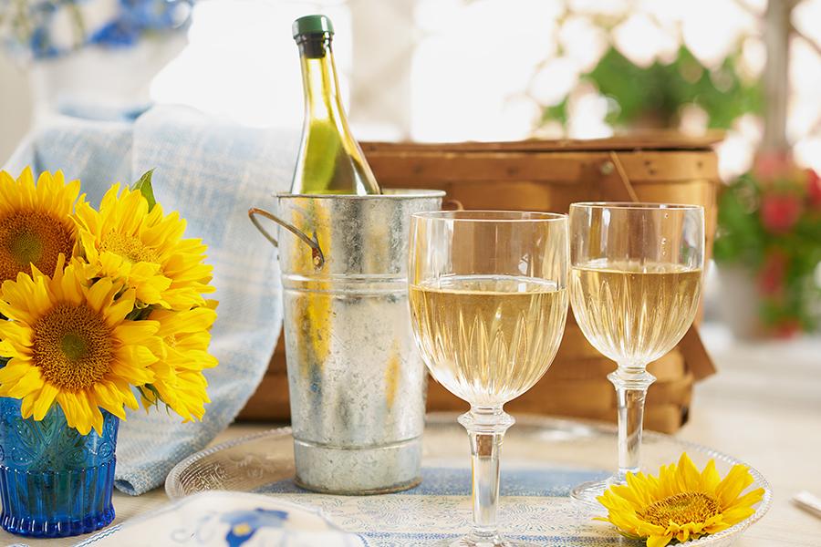 Lightweight Plastic Wine Goblets