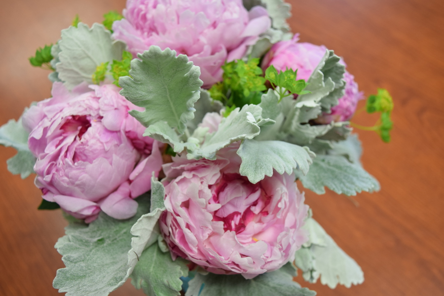 peonies-and-dusty-miller