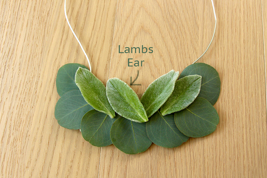 add-lambs-ear