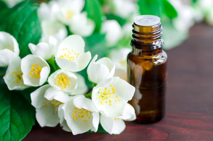 jasmine-flowers-oil