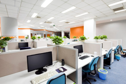 office-plants-desk-houseplants