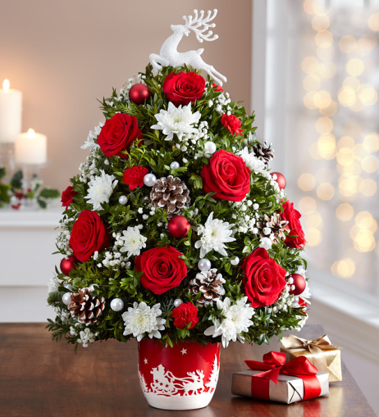 Cyber Mondays Deals on Flowers, Plants & Gifts