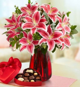 pink-valentines-lily-104613