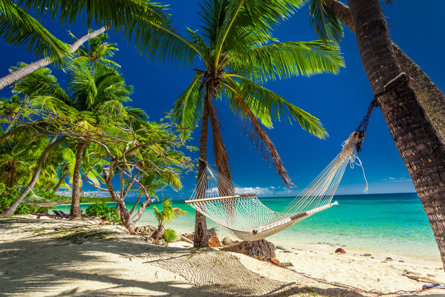fiji beach with hammock and palm trees