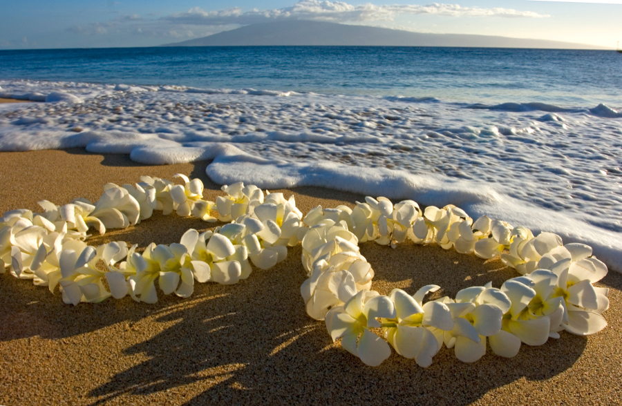 hawaiian leis on a beach