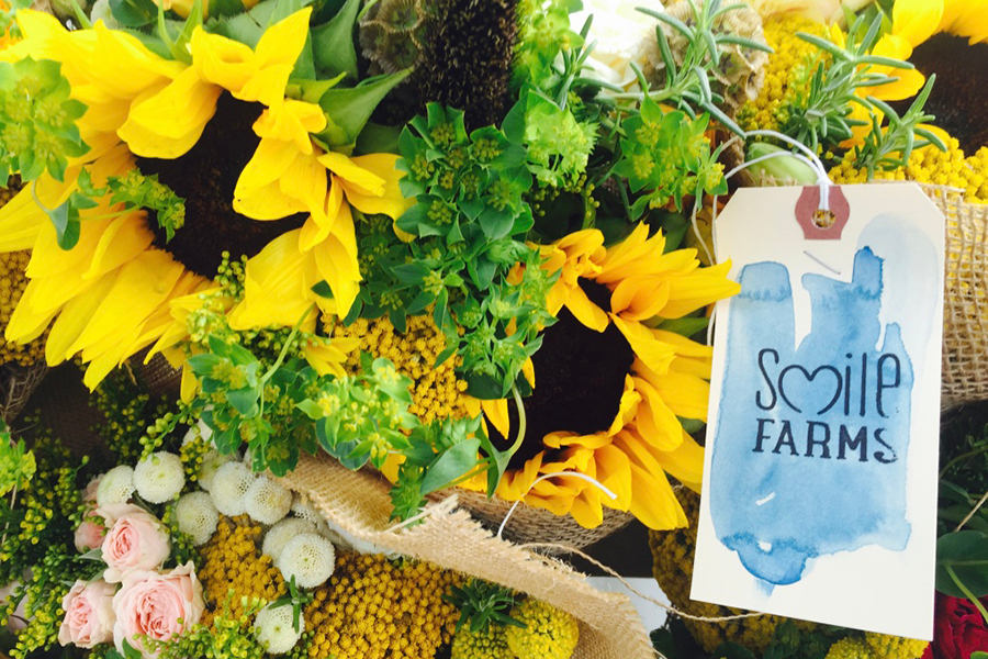 Smile Farms Tag on Sunflowers