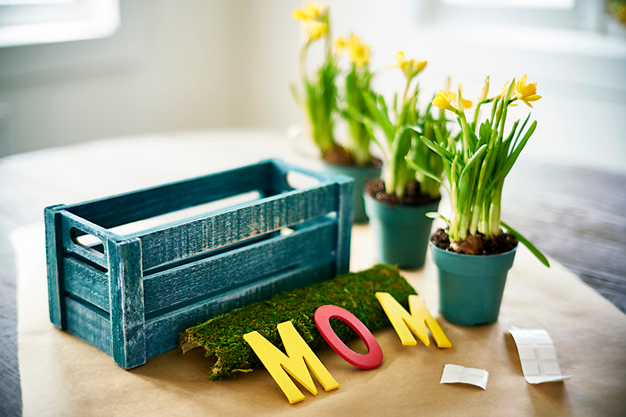 Ingredients for mom planter