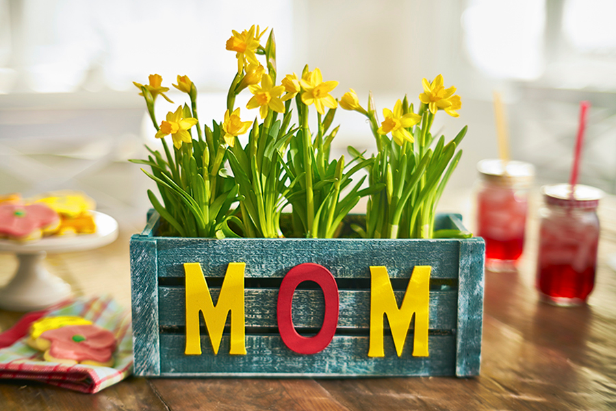 Mom planter with flowering plants