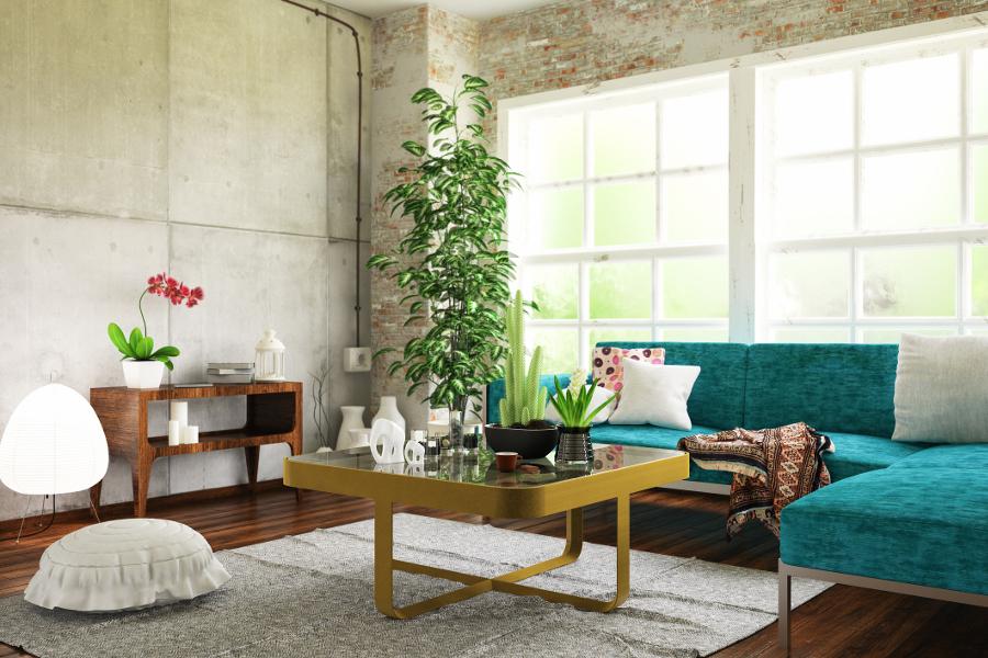 Plants for Apartment | Apartment Plant Décor | Petal Talk