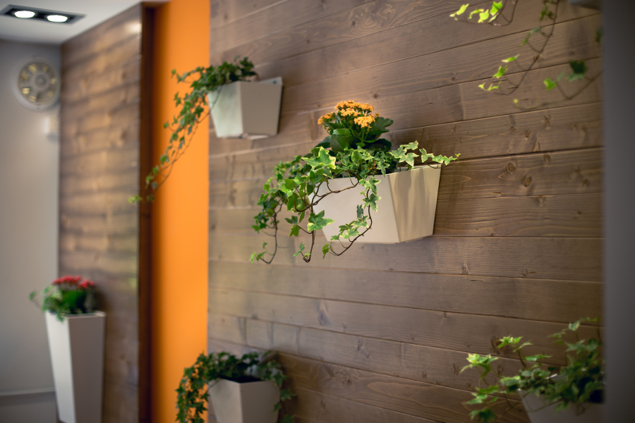 Flowers hanging on wall