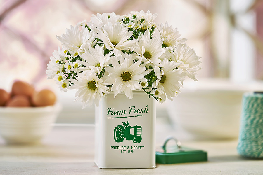 Farm Fresh Daisies Arrangement