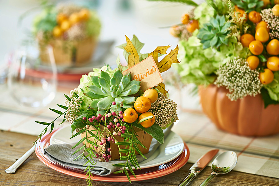 Succulent Place Setting for Thanksgiving