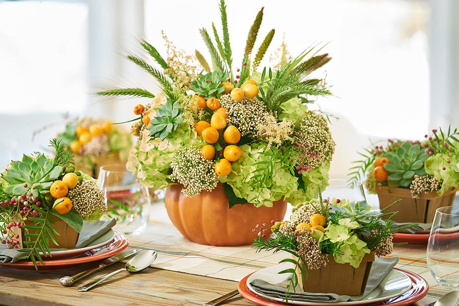 Thanksgiving Centerpiece with Pumpkin and Succulents