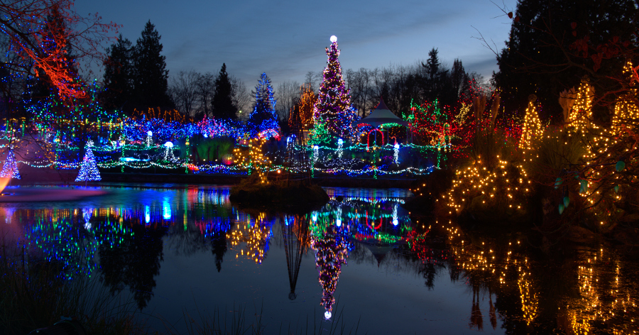 holiday christmas light shows