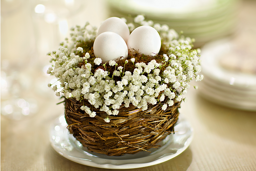 Small centerpiece with eggs and baby's breath