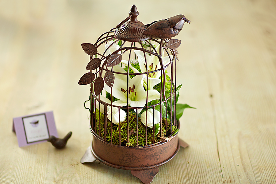 Small bird cage centerpiece with single white lily stem