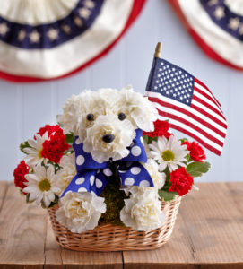 patriotic-dog-bouquet