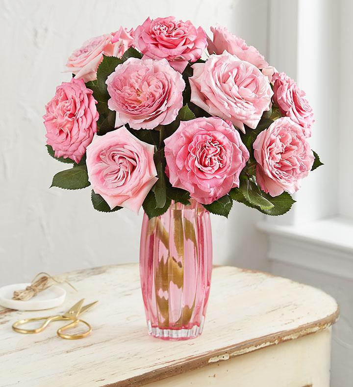 pink English garden roses