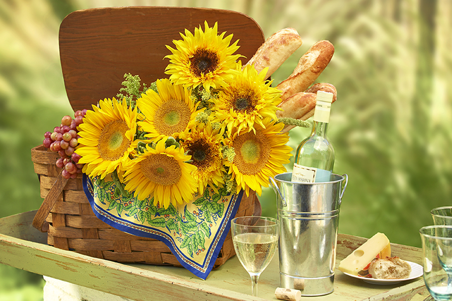 sunflower al fresco
