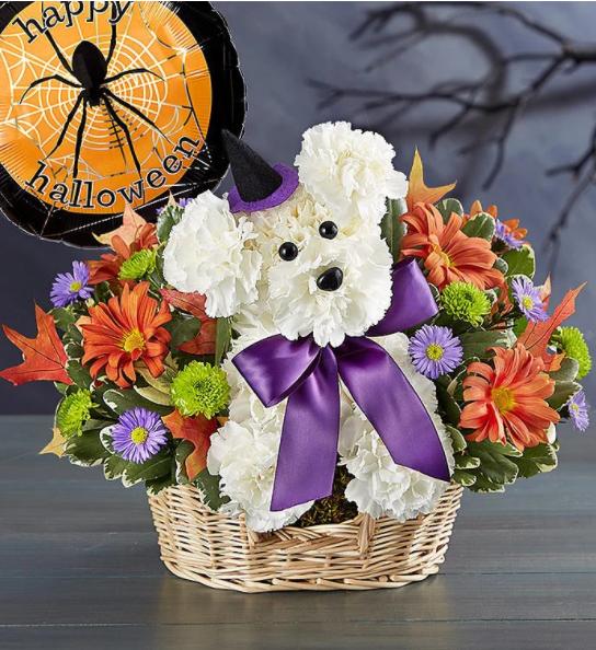 Witchy Pooch Floral Arrangement