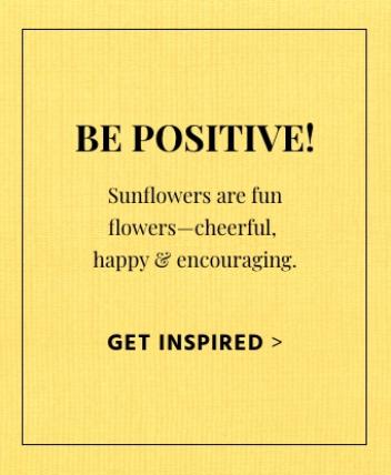Sunflower Ad