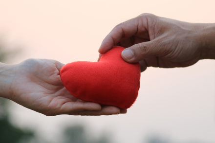 Two hands holding a plush heart
