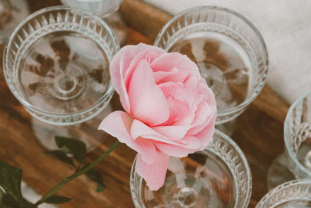 Rose and wine glasses