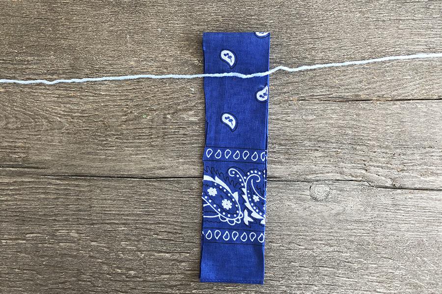 Blue bandana strip
