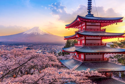 Photo of Mt. Fuji and Chureito pagoda at sunset, with Japanese flowers (cherry blooms) in the background