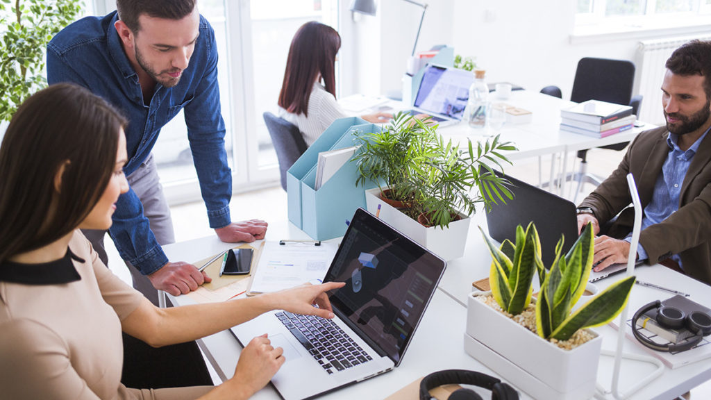 Photo of young workers in an office that makes good use of desk plants