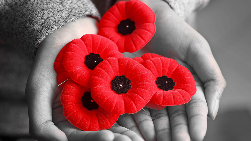 The importance of remembrance: In this photo, a woman holds a collection of poppies.