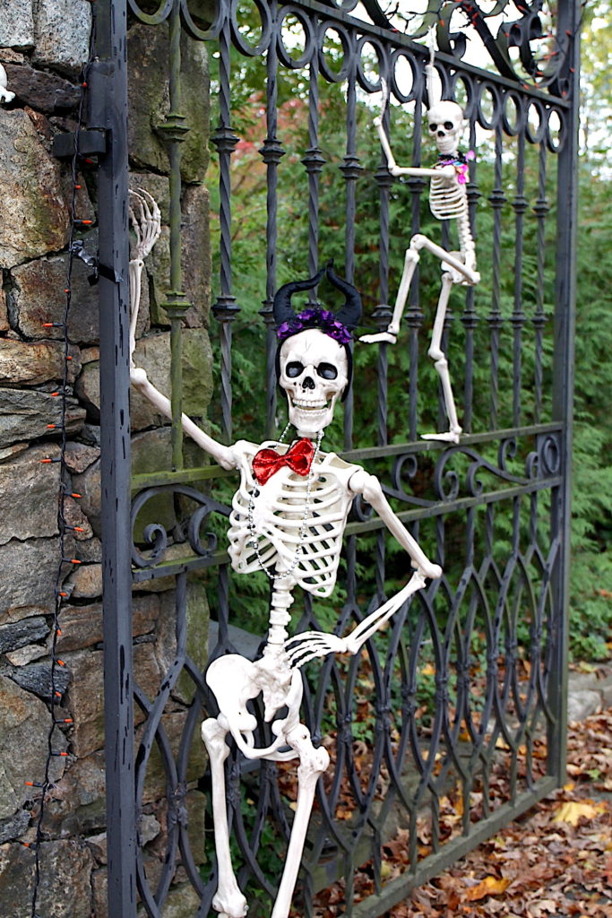 Halloween is the main holiday associated with October birthdays. Here is a photo of a spooky skeleton.