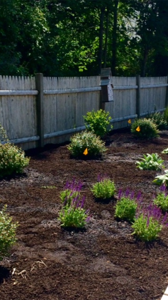 Photo of the memory garden at Rosewood Manor, which treats people with dementia by using plants, flowers, and gardening.