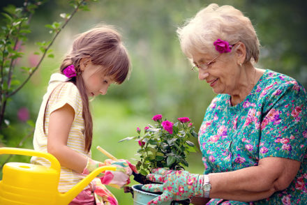 Photo from memory gardens that help people with dementia by using plants, flowers, and gardening.